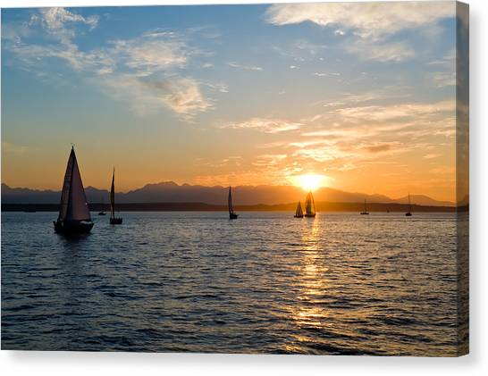Sunset Sailboats Canvas Print by Tom Dowd