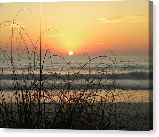 Sunset Sea Grass Canvas Print