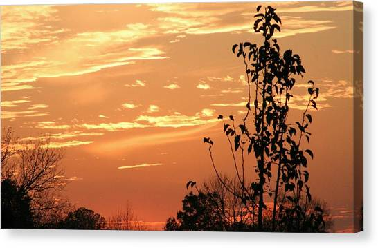 Sunset Series No. 1 Canvas Print by Christina Martinez