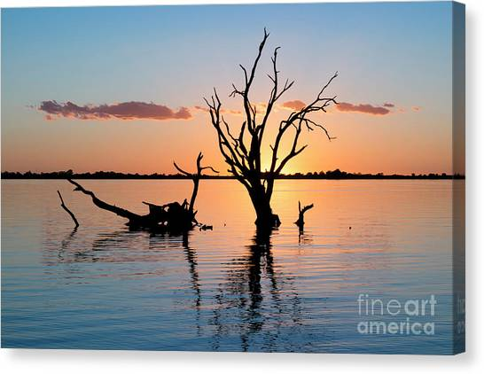 Canvas Print featuring the photograph Sunset Silhouette by Ray Warren