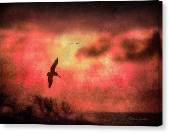 Sunset Soaring II Canvas Print