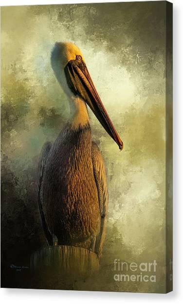 Florida Wildlife Canvas Print - Sunset Stare by Marvin Spates