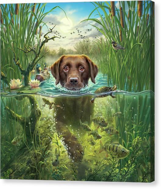 Golden Retrievers Canvas Print - Sunset Swim by Mark Fredrickson