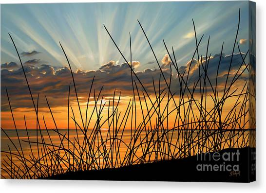 Sunset Thru The Grass Canvas Print