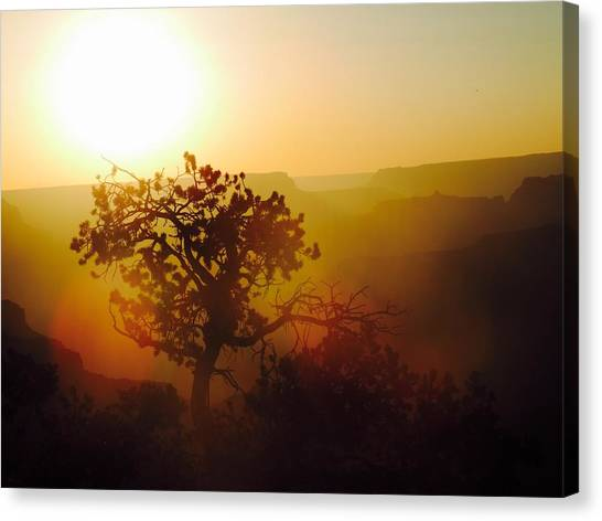 Grand Canyon Canvas Print - Sunset by Tiffany Marchbanks