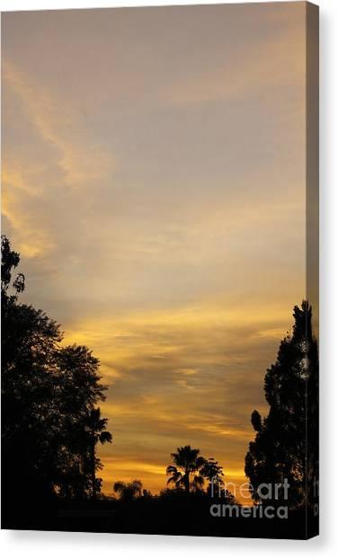 Sunset Canvas Print by Viktor Savchenko