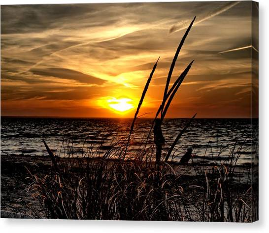 Sunset Walk Canvas Print