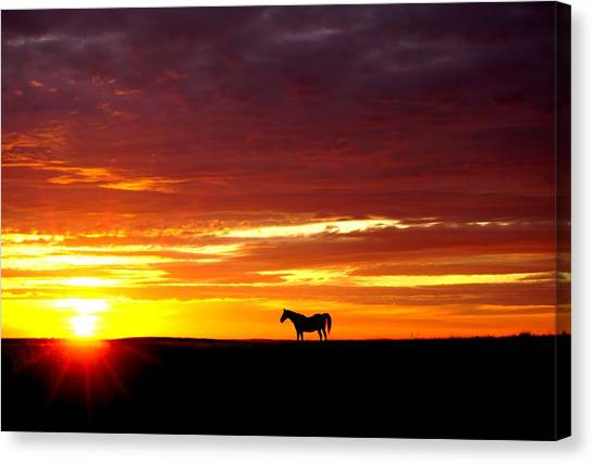 Sunset Watcher Canvas Print