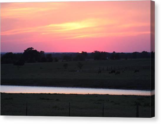 Sunset With Pond Canvas Print by Jonathan Kotinek
