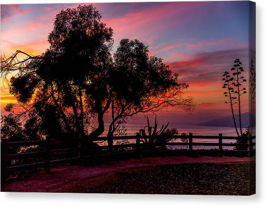 Sunset Silhouettes From Palisades Park Canvas Print