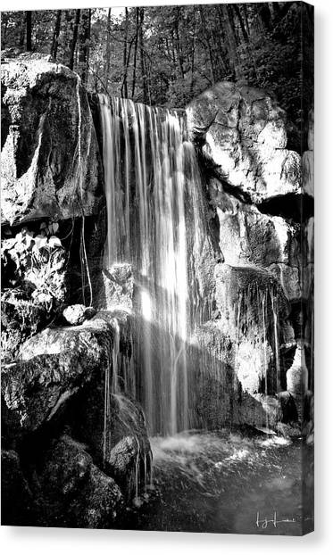Mossy Forest Canvas Print - Sunshine Falls Black And White by Lj Lambert