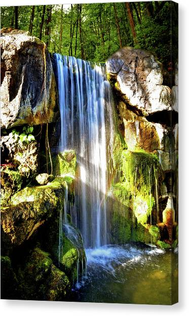 Mossy Forest Canvas Print - Sunshine Falls by Lj Lambert