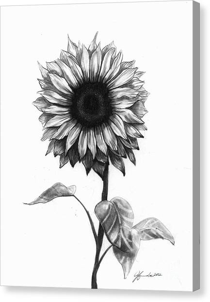Fibonacci Canvas Print - Sunshine Love by J Ferwerda