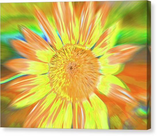 Sunsoaring Canvas Print
