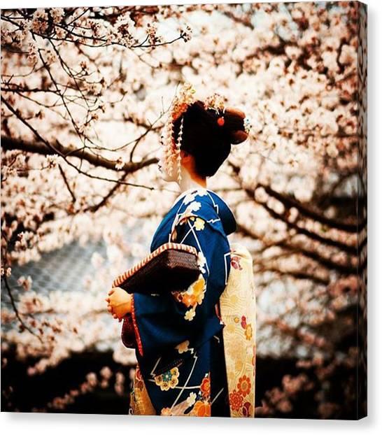 Fairies Canvas Print - Sun_summer #cherryblossom #japan by Kanna Fairy