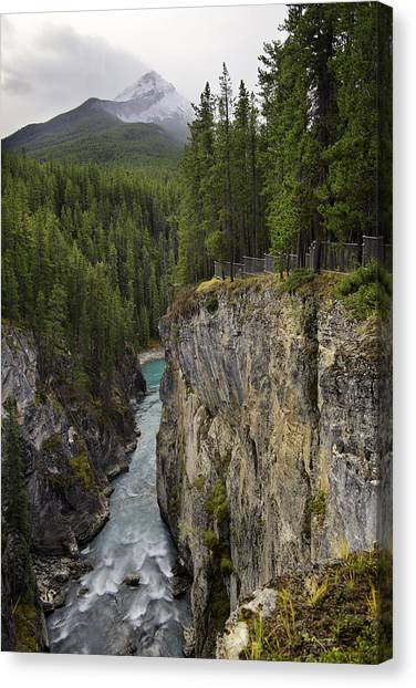 Sunwapta Falls Canyon Canvas Print