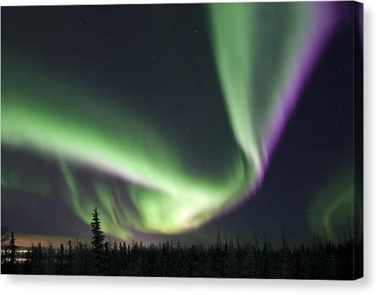 Super Aurora Canvas Print