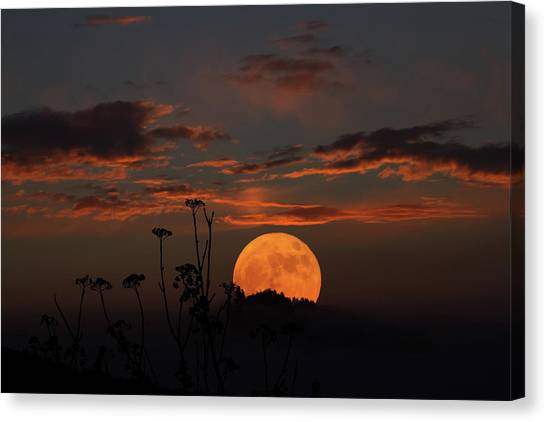 Super Moon And Silhouettes Canvas Print