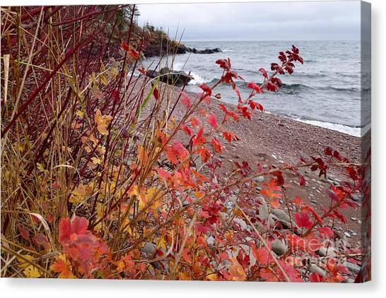 Superior November Color Canvas Print
