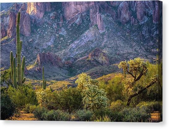 Mountain Cliffs Canvas Print - Superstitions Cactus by Dave Dilli