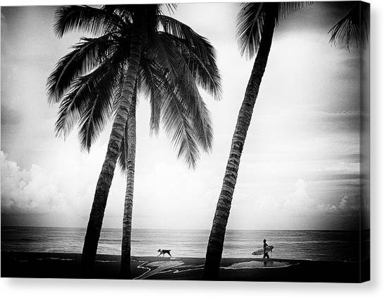 Canvas Print featuring the photograph Surf Mates by Nik West