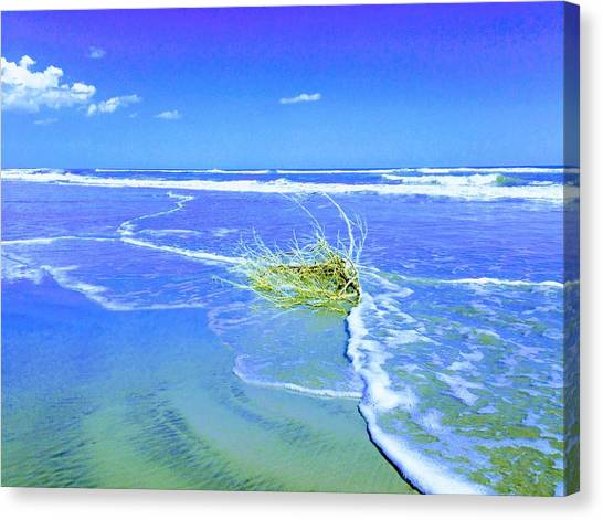 Surf Snuggle Canvas Print