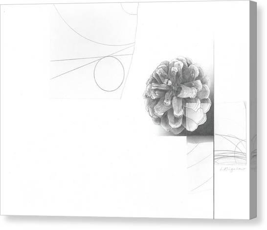 Surface No. 2 Canvas Print