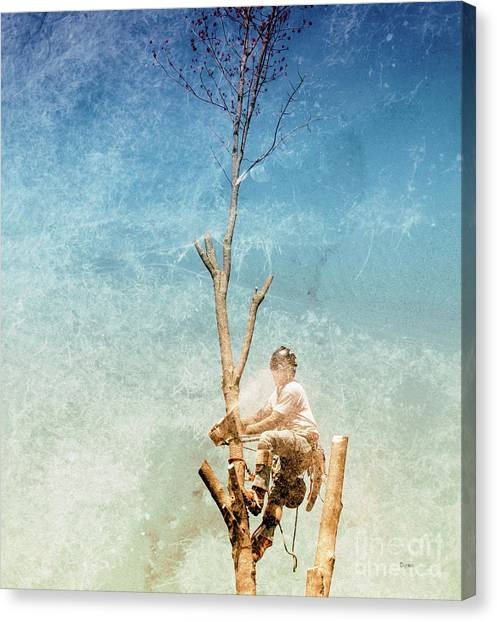 Surgeon Of The Sky  Canvas Print by Steven Digman