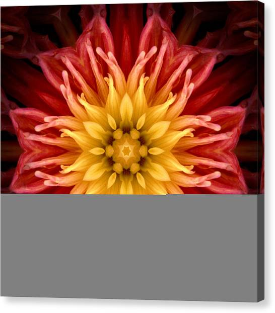 Surreal Flower No.1 Canvas Print