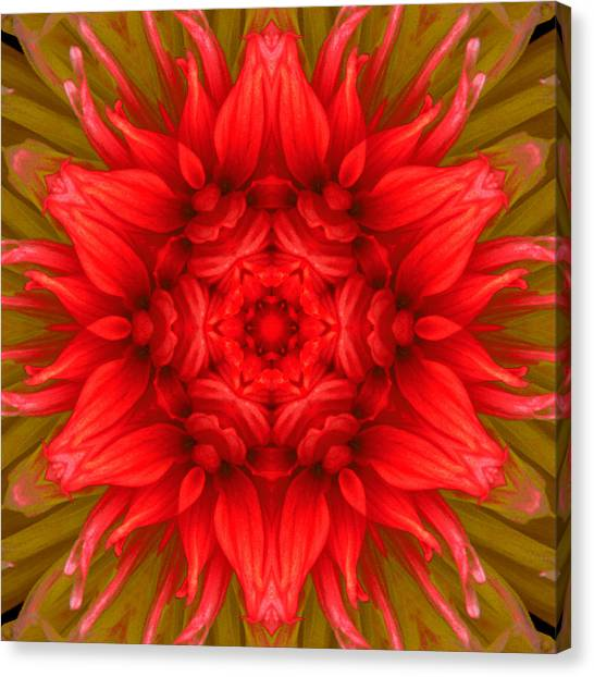 Surreal Flower No.6 Canvas Print