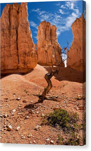 Surrounded By Hoodoos Canvas Print by James Marvin Phelps