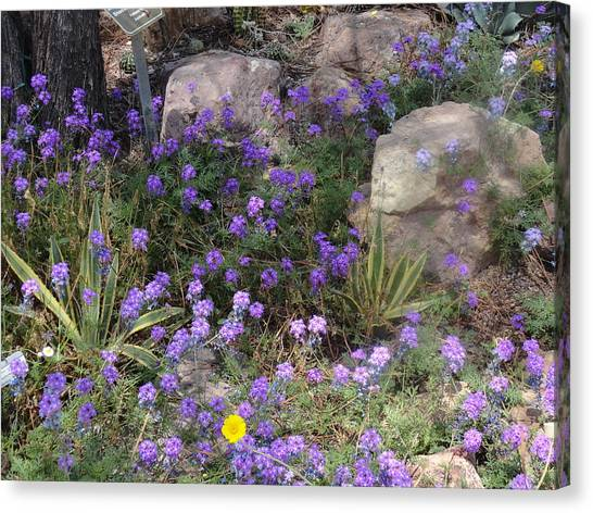 Surrounded By Purple Flowers Canvas Print