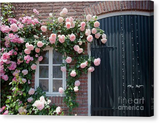 Surrounded By Roses Canvas Print