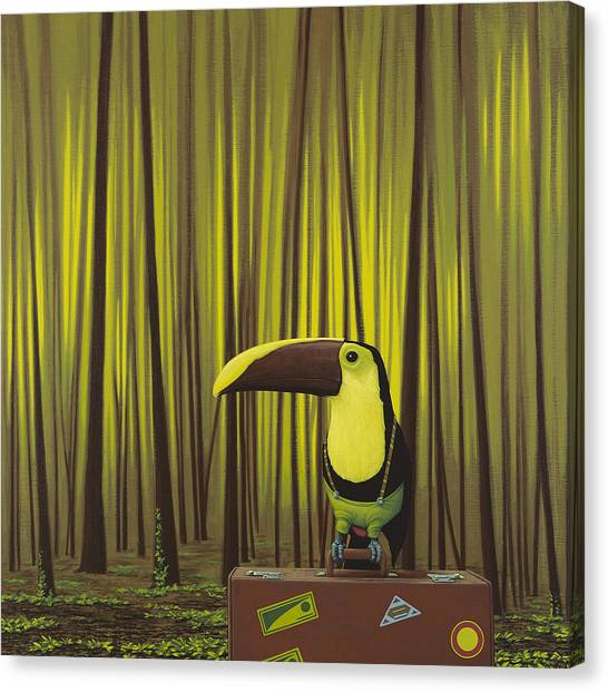 Toucan Canvas Print - Suspenders by Jasper Oostland