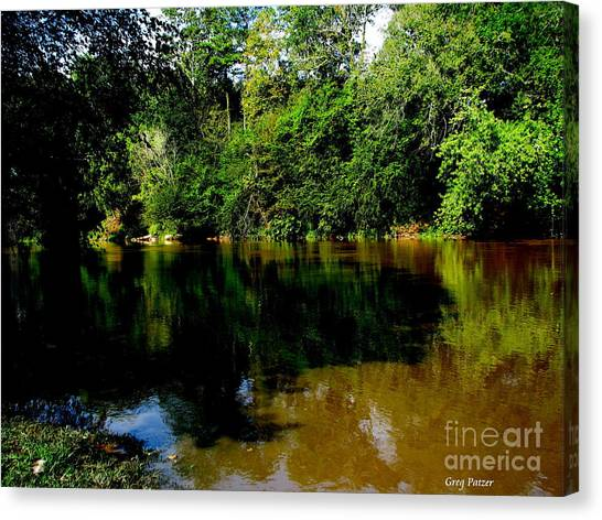 Suwannee River Canvas Print by Greg Patzer