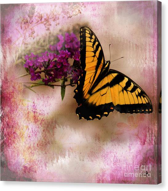Swallow Tail Full Of Beauty Canvas Print