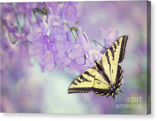 Swallowtail On Purple Flowers Canvas Print