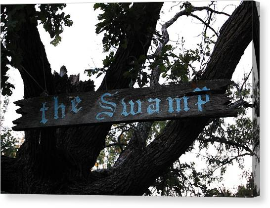 Swamp Oak Canvas Print by The Stone Age