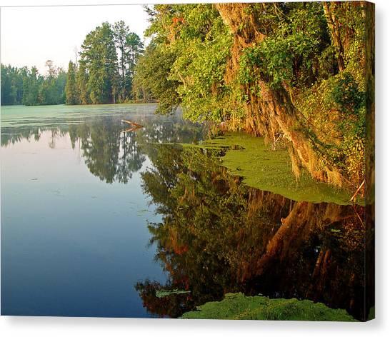 Swamp Pond Canvas Print by Michael Whitaker
