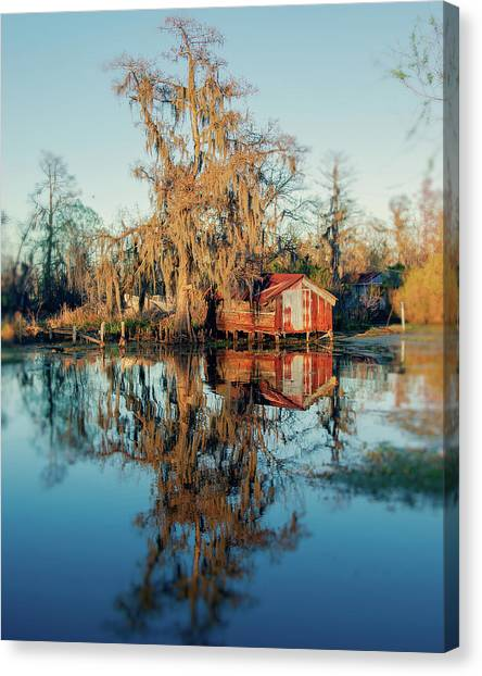 Swamp Reflections Canvas Print