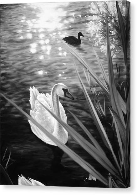 Swan 1 Canvas Print