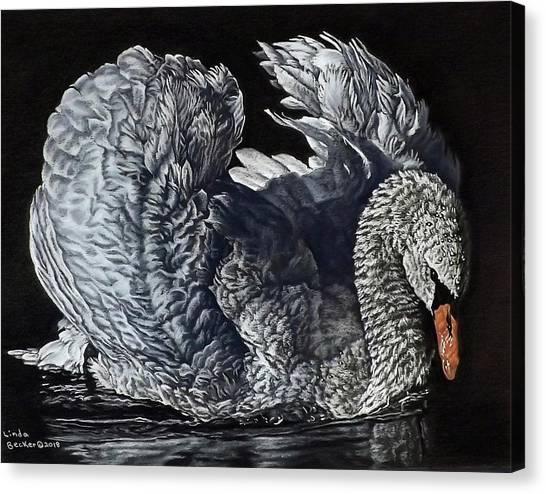 Swan #2 Canvas Print