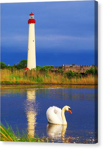 Swan At The Lighthouse Canvas Print