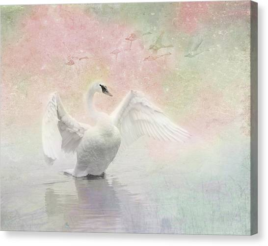 Swan Dream - Display Spring Pastel Colors Canvas Print