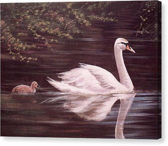 Swan Lake Canvas Print by Cathal O malley