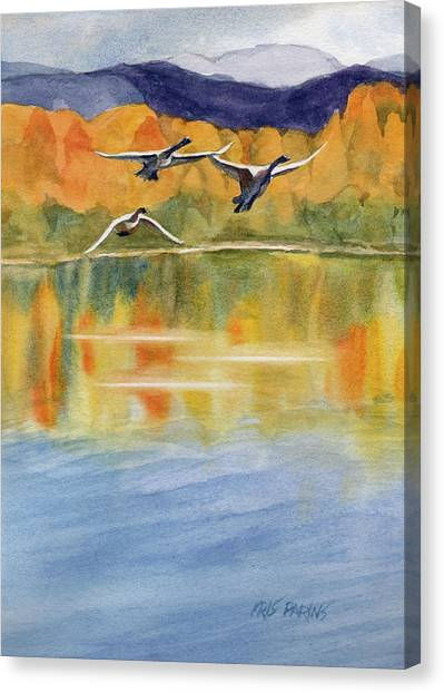 Swan Lake Revisited Canvas Print by Kris Parins