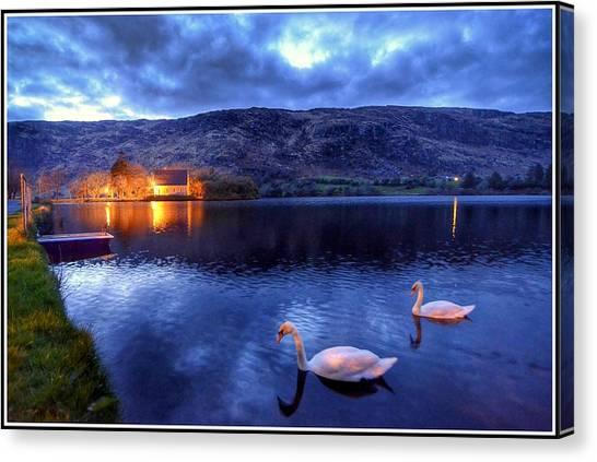 Swans At Gougane Barra Canvas Print