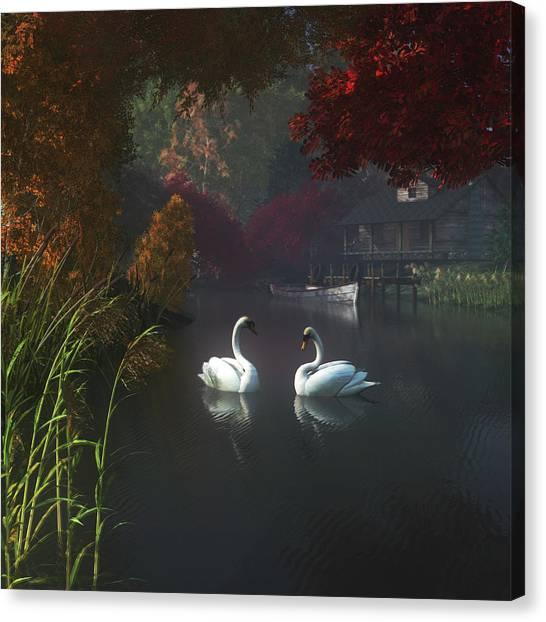 Swans In A River Near Home Canvas Print