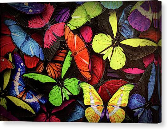 Swarm Of Butterfles  Canvas Print