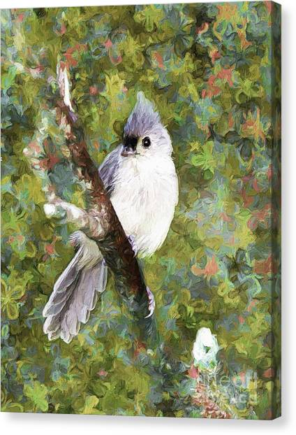 Sweet And Endearing Canvas Print
